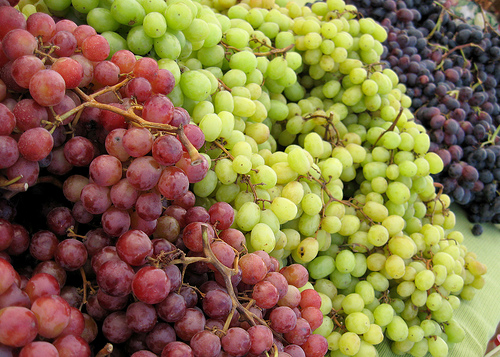 How Do You Like Them Apples A Guide To Wine Varietals For Beginners Season It Already