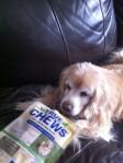 Benny True Chews