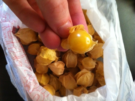 Ground Cherries 3