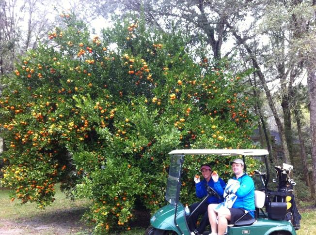 SA Golf-Oranges