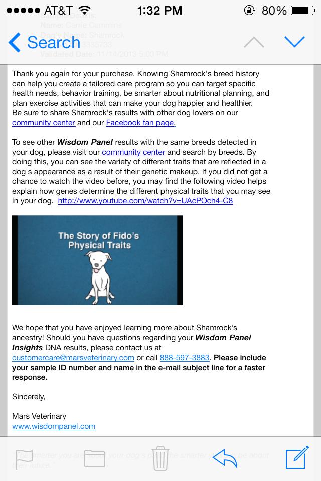 Shamrock-email