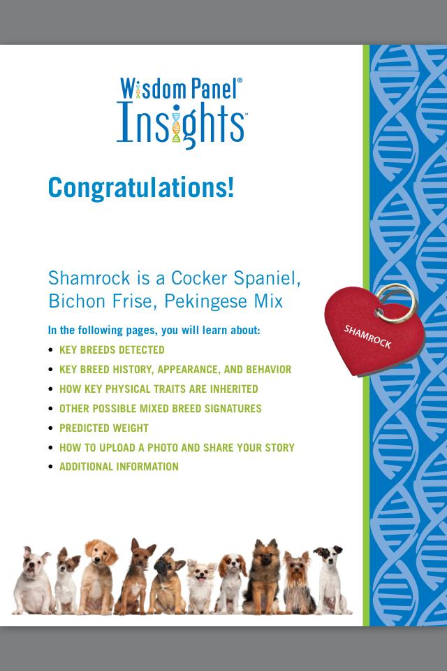 Shamrock-results