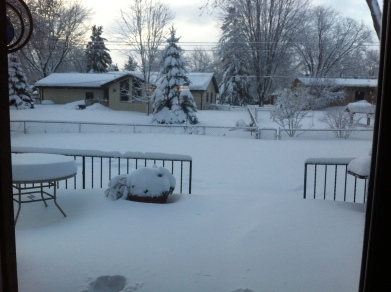 Snow 2.21.14